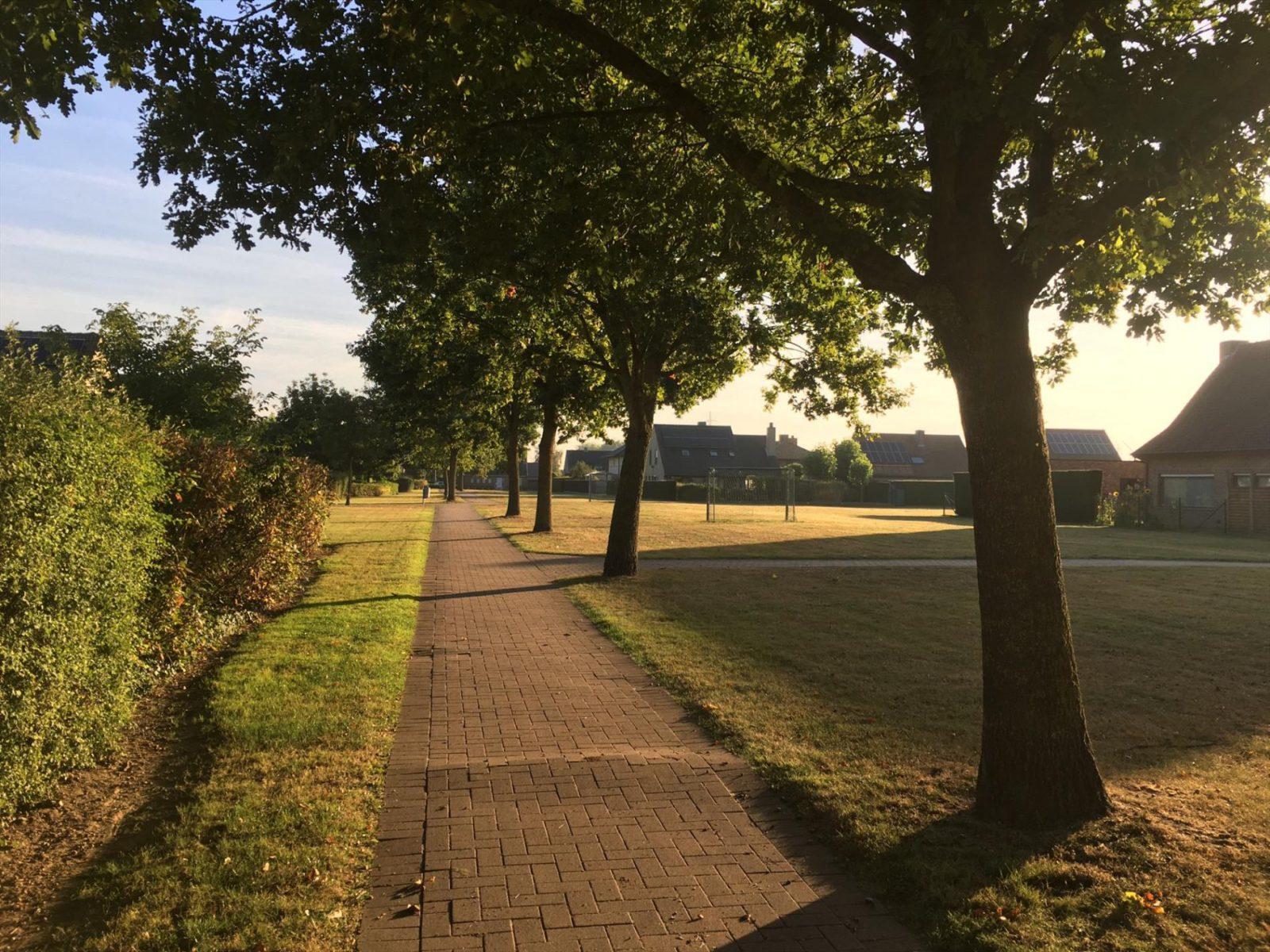 Seringenstraat